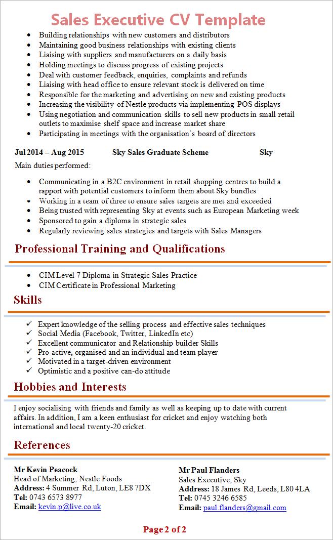 Cv Template Executive