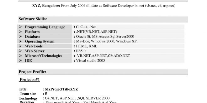 Experience Resume Format For Xml Developer