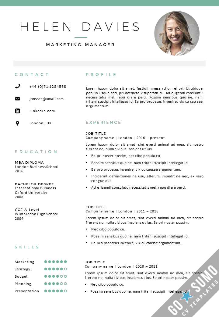 Cv Template With Photo