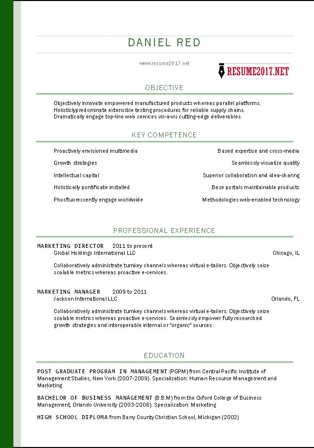 Resume Format 2017 Template