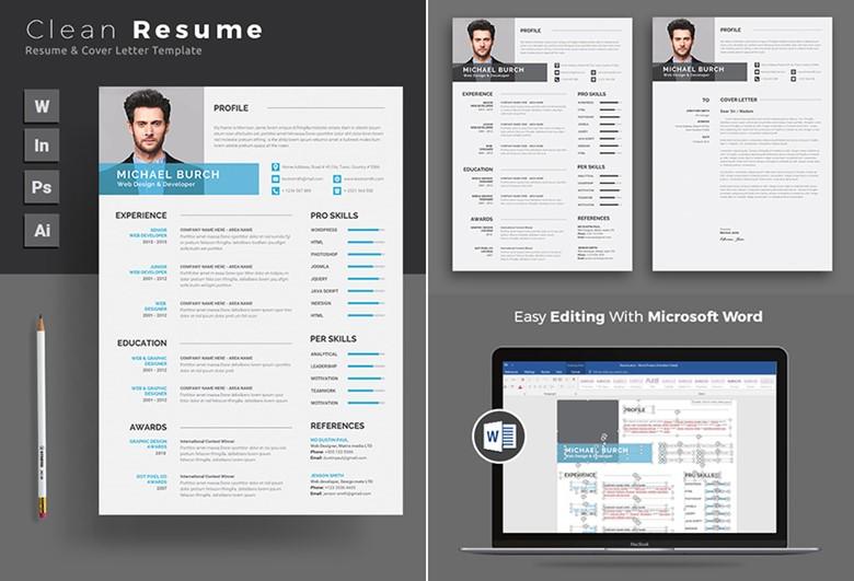 Format Resume Yang Baik