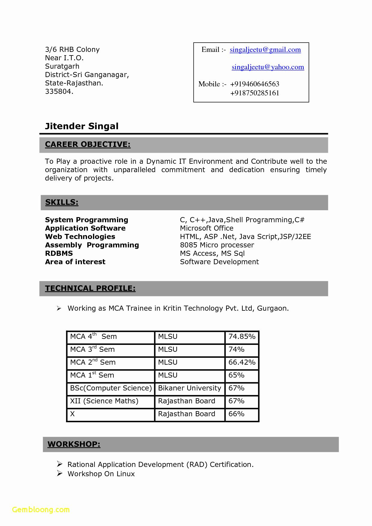 Resume Format For 3Rd Year Engineering Students