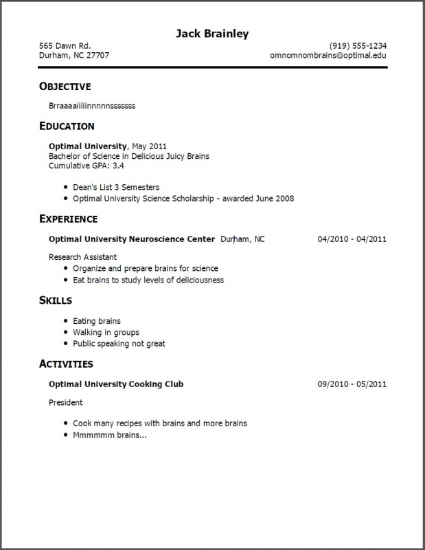 Copy Of Resume Format
