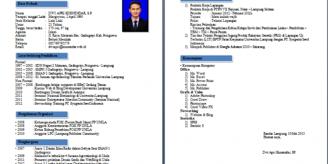 Resume Format Kerja
