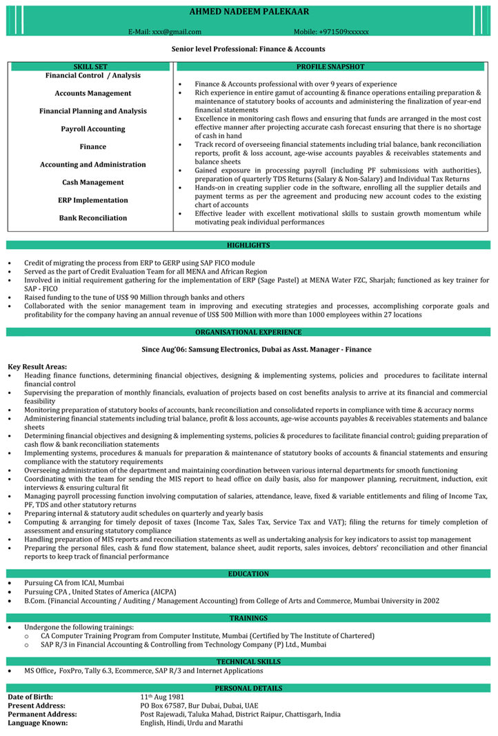 C A Resume Format Samples