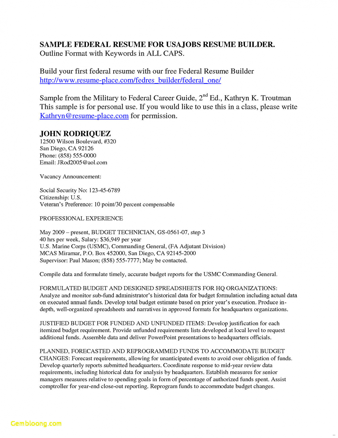 Resume Format For Usa Jobs