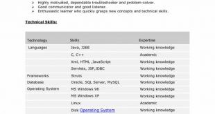9 Years Experience Resume Format