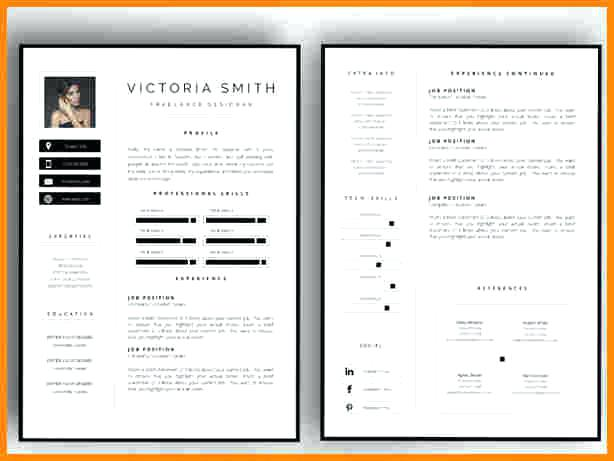2 Page Cv Template Free