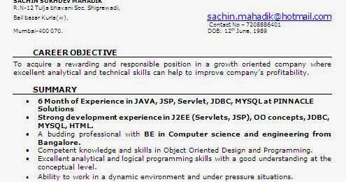 Resume Format 6 Months Experience