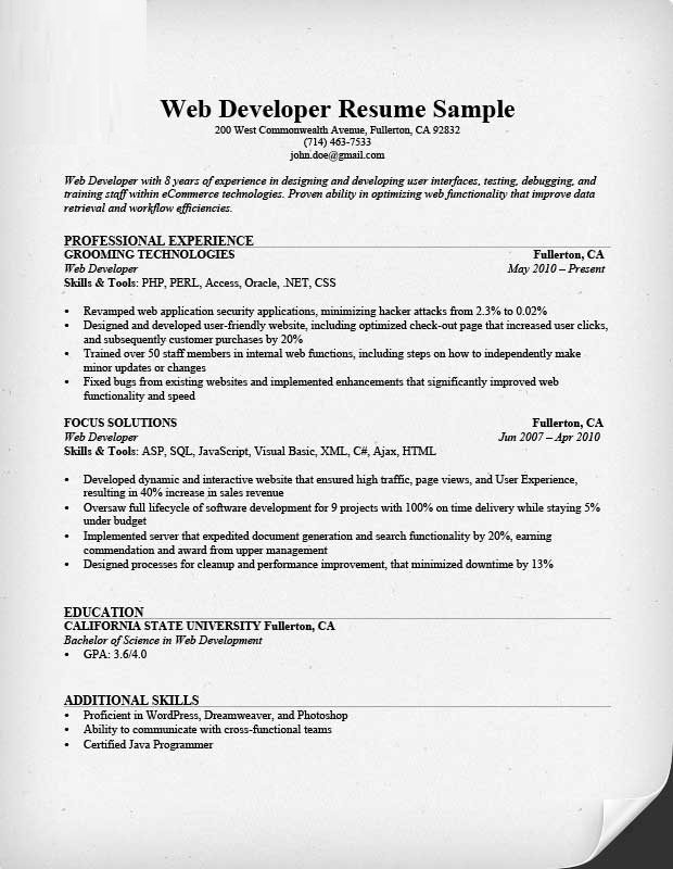 Ecommerce Developer Resume Format