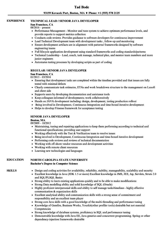 Resume Format Java