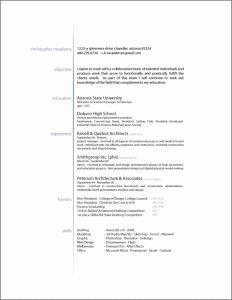 Resume Format Ideas