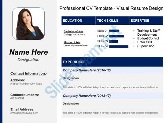 Cv Template Visual