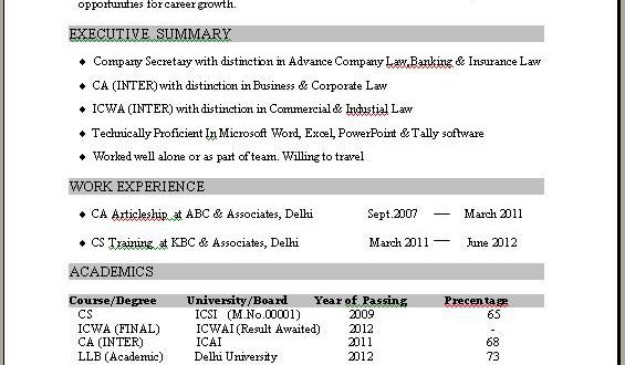 1 Year Experience Cv Template