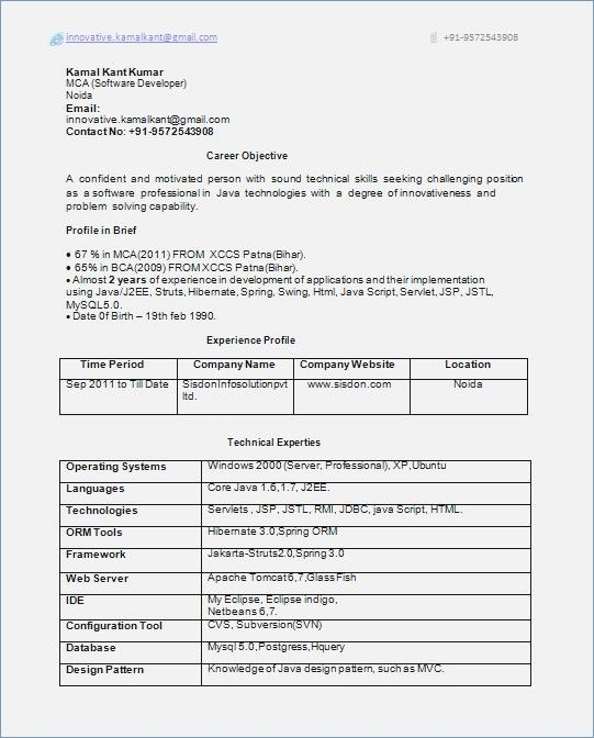 Resume Format 1 Year Experienced Software Engineer