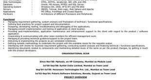 Resume Format For 4 Yrs Experience