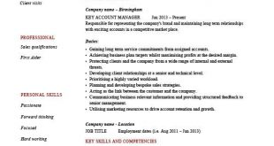 Cv Template Key Skills