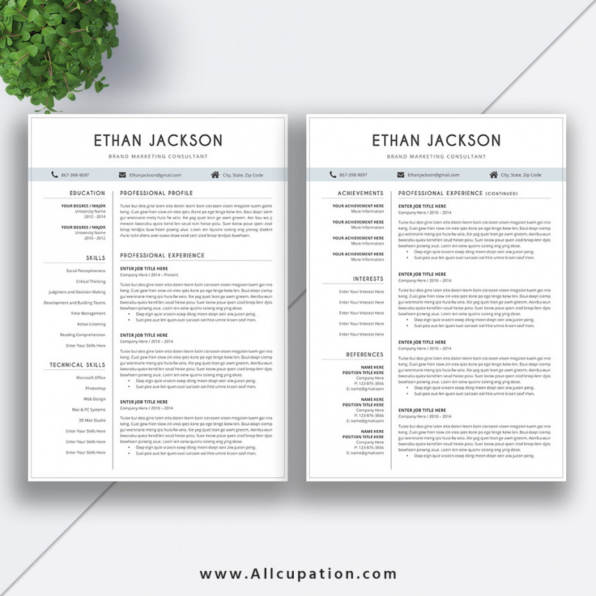 Resume Template 3 Page Cv Template