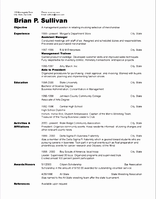 Cv Template Volunteer Experience